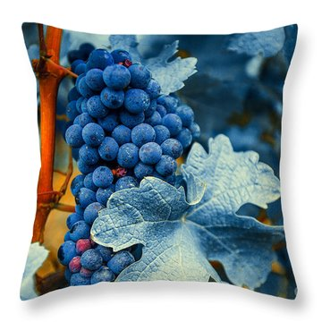 Grapes - Blue  Throw Pillow by Hannes Cmarits