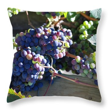 Grapes Throw Pillow by George Mount