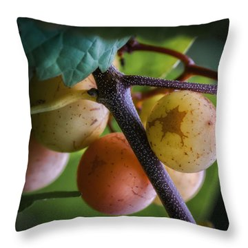 Grapes With Color Throw Pillow by James Barber