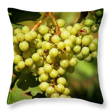 Grapes - Yummy And Healthy Throw Pillow by Christine Till