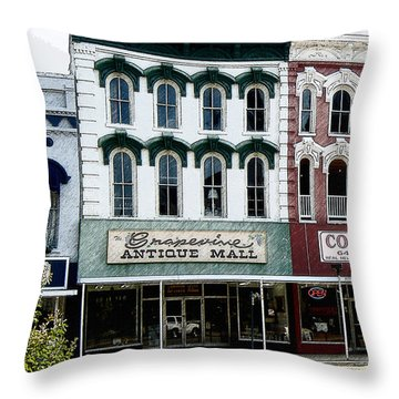 Grapevine Antiques Throw Pillow