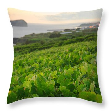 Grapevines And Islet Throw Pillow by Gaspar Avila