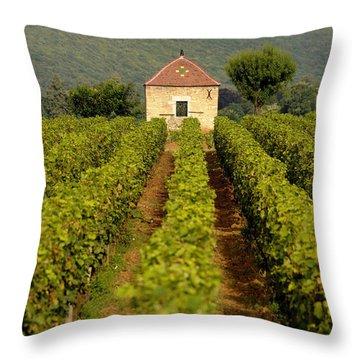 Grapevines. Premier Cru Vineyard Between Pernand Vergelesses And Savigny Les Beaune. Burgundy. Franc Throw Pillow by Bernard Jaubert