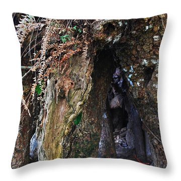 Gras Throw Pillow