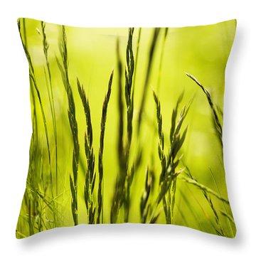 Grass Abstract Throw Pillow by Svetlana Sewell