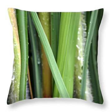 Throw Pillow featuring the photograph Grass Blades Morning Dew by Deborah Fay
