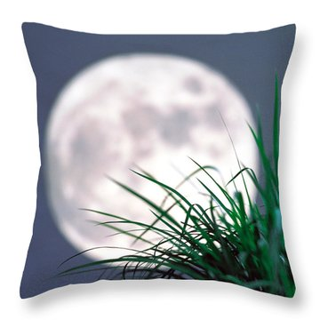 Grass Blades With Full Moon Throw Pillow