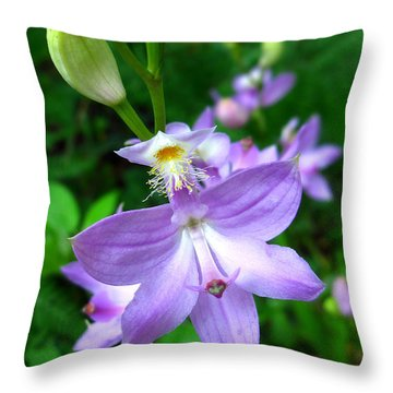 Grass Pink Orchid Throw Pillow by William Tanneberger