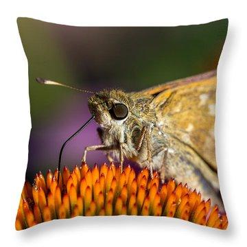 Grass Skipper Throw Pillow by Bernd Laeschke