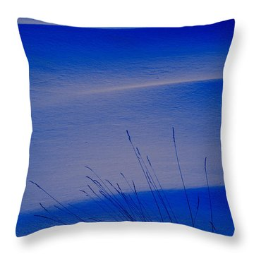 Grasses And Twilight Snow Drifts Throw Pillow by Irwin Barrett