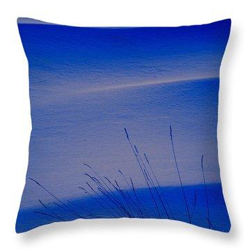 Grasses And Twilight Snow Drifts Throw Pillow by Irwin Barrett