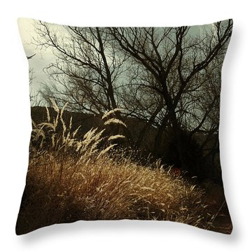 Throw Pillow featuring the photograph Grasses Of Winter by Karen Slagle