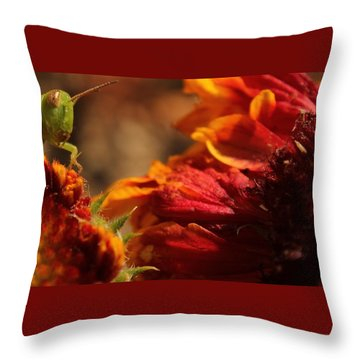 Grasshopper In The Marigolds Throw Pillow