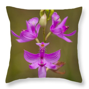 Grasspink #1 Throw Pillow