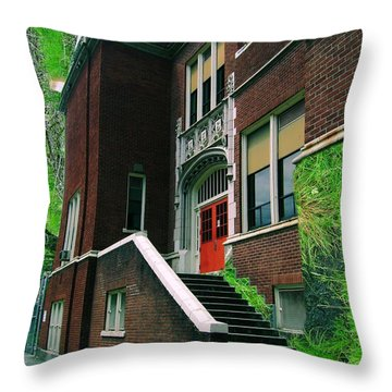 Grassroots Education Throw Pillow