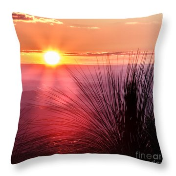 Grasstree Sunset Throw Pillow by Peta Thames