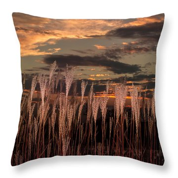 Grassy Sunset Throw Pillow