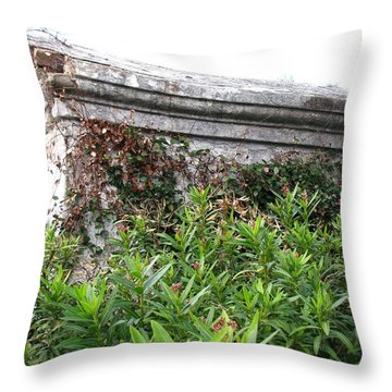 Throw Pillow featuring the photograph Grave by Beth Vincent