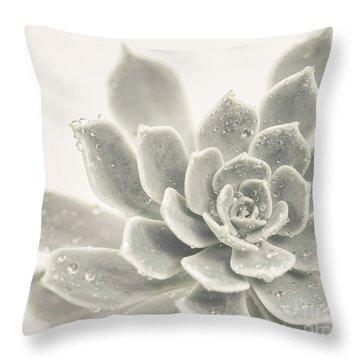 Gray Succulent 2 Throw Pillow