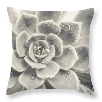 Gray Succulent Throw Pillow