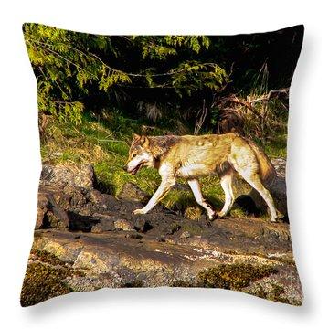 Gray Wolf Throw Pillow by Robert Bales