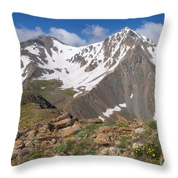 Grays And Torreys Peak Throw Pillow