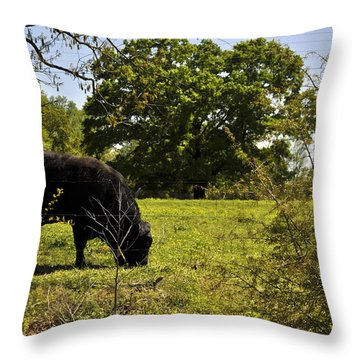 Grazing Alabama Throw Pillow