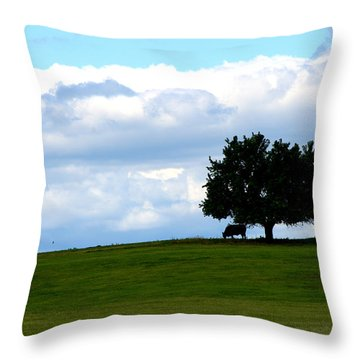 Throw Pillow featuring the photograph Grazing by Cathy Shiflett
