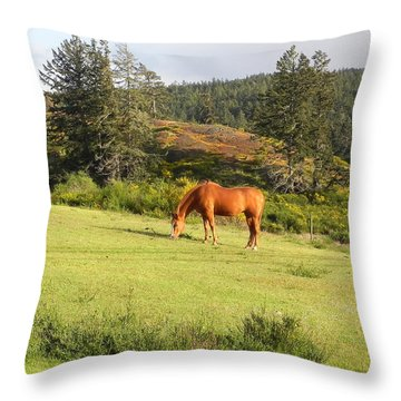 Throw Pillow featuring the photograph Grazing by Cheryl Hoyle