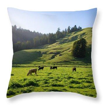 Grazing Hillside Throw Pillow by CML Brown