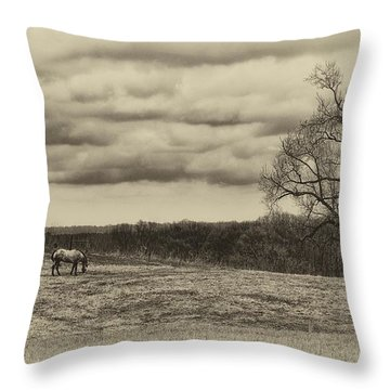Grazing Throw Pillow