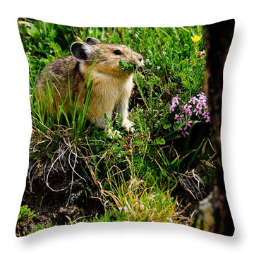 Grazing Pika Throw Pillow