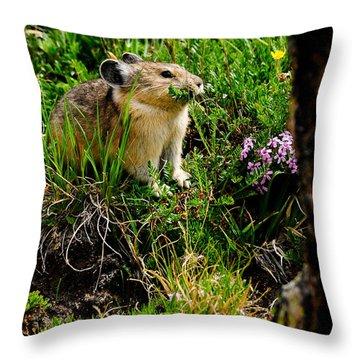 Grazing Pika Throw Pillow by Bonnie Fink