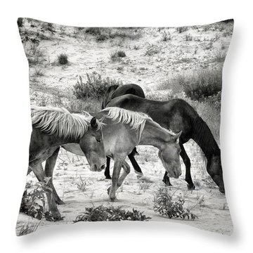 Grazing Throw Pillow by William Beuther