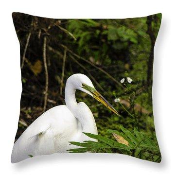 Great Blue Heron - White Throw Pillow