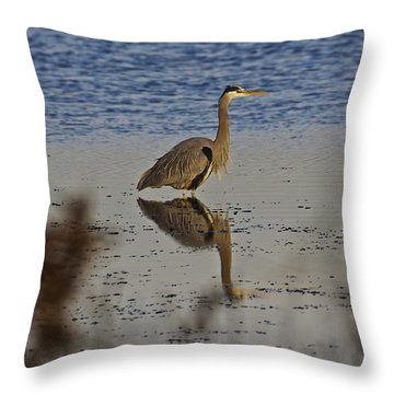 Great Blue Heron 1 Throw Pillow by SC Heffner
