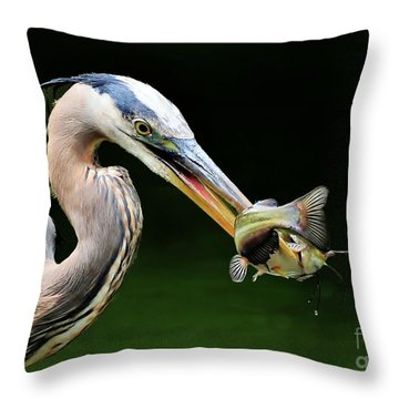 Throw Pillow featuring the photograph Great Blue Heron And The Catfish by Kathy Baccari