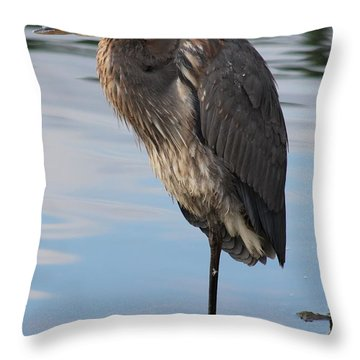 Great Blue Heron At Deep Water Lagoon Throw Pillow by Robert Banach