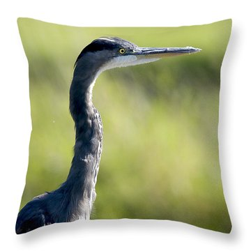 Great Blue Heron Backlit Throw Pillow