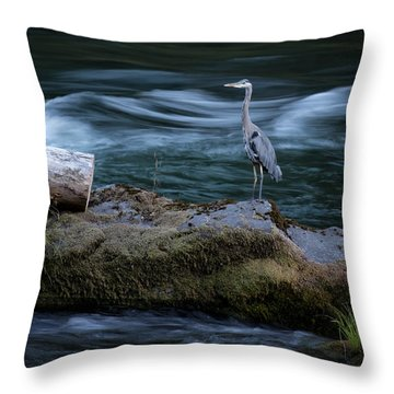 Throw Pillow featuring the photograph Great Blue Heron by Belinda Greb