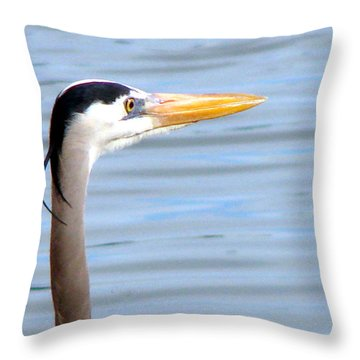 Throw Pillow featuring the photograph Great Blue Heron Breeding Profile by Linda Cox