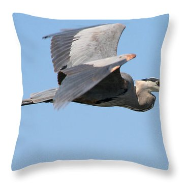 Throw Pillow featuring the photograph Great Blue Heron Flying by Bob and Jan Shriner