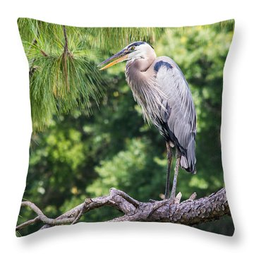 Great Blue Heron I Throw Pillow