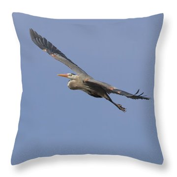 Great Blue Heron In Flight-2 Throw Pillow by Thomas Young