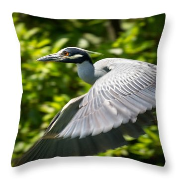 Great Blue Heron In Flight Throw Pillow by Gregory Daley  PPSA