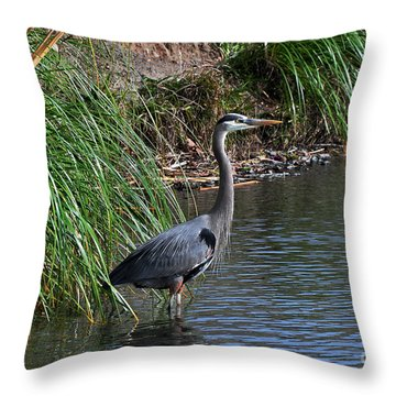 Great Blue Heron In Profile Throw Pillow