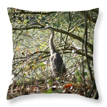 Throw Pillow featuring the photograph Great Blue Heron by Karen Silvestri