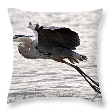 Great Blue Heron Landing Series 1 Throw Pillow