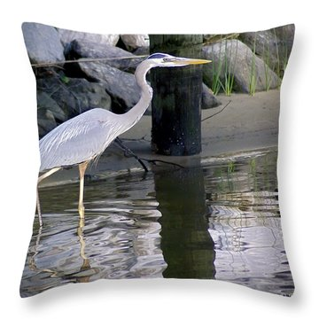Great Blue Heron - Mealtime Throw Pillow by Brian Wallace