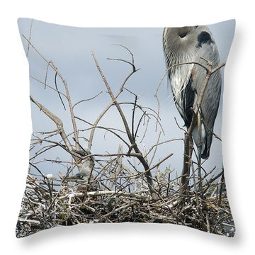 Great Blue Heron Nest With New Chicks Throw Pillow